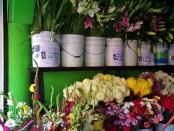 Floreria Iris in Playa Del Carmen
