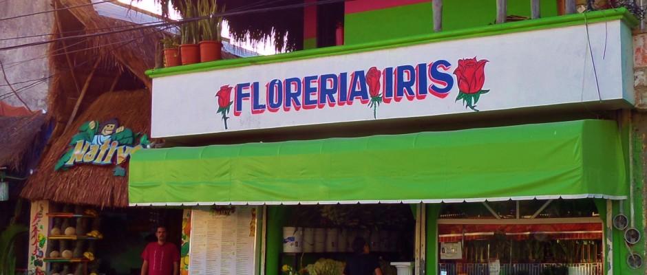 Flower store in Playa Del Carmen