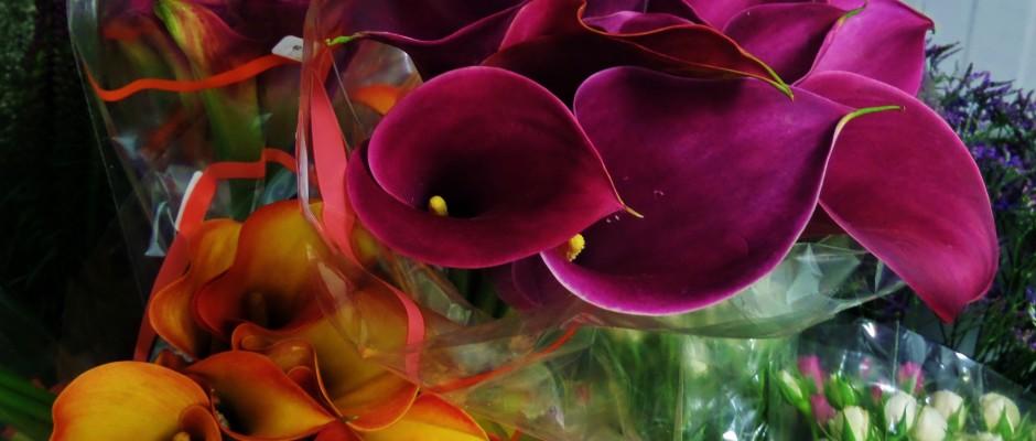 xochitl florist Playa del carmen