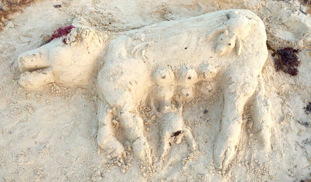 Funny Playa Del Carmen