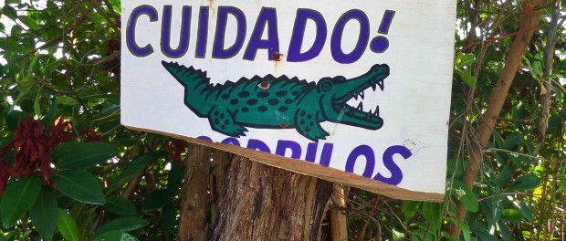 I think the crocs got to this sign before you!