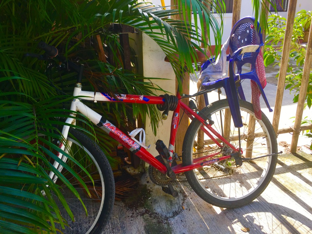 Bicycle in Mexico