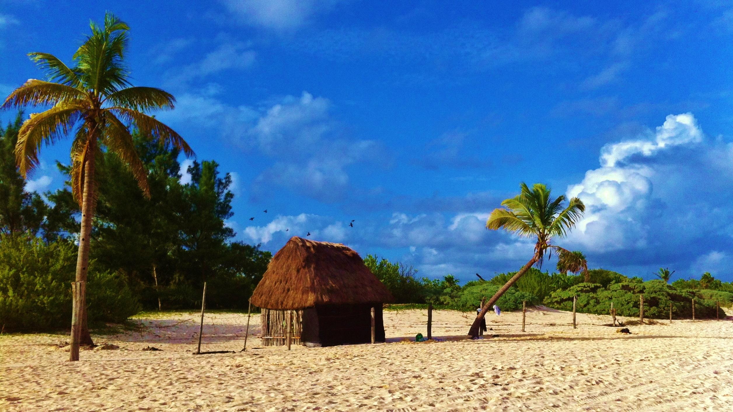 Playa Del Carmen Beach 3