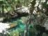 Cenote Yucatan