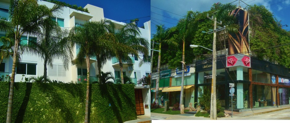 Green building in Playa Del Carmen