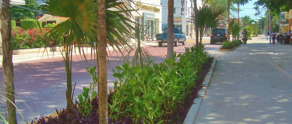 Playa Del Carmen 10th Avenue bike path with new plants