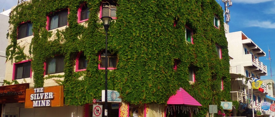 Building in Playa Del Carmen covered in vines
