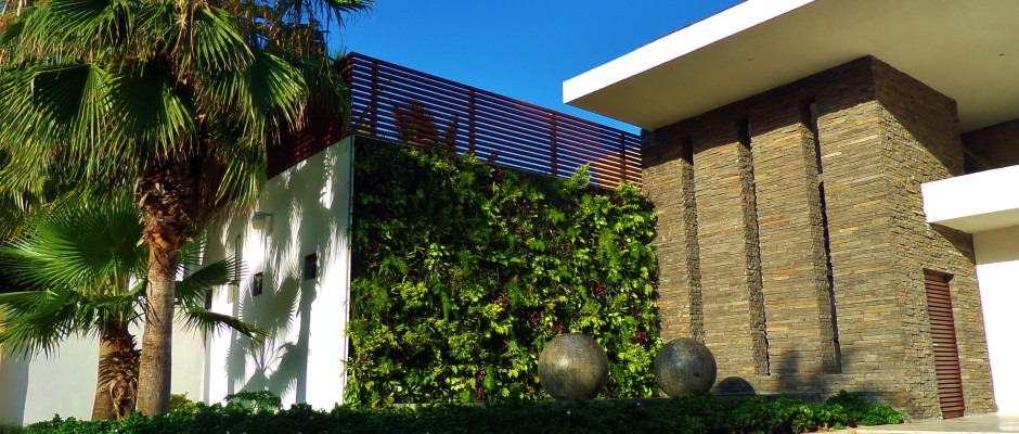Green wall at Mamitas Beach club