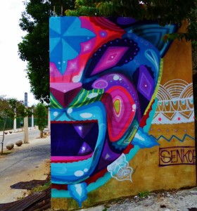 Street art graffiti and Murals in Playa Del Carmen Mexico