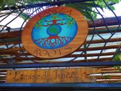 Pangea Roots Juice Bar in Plya Del Carmen