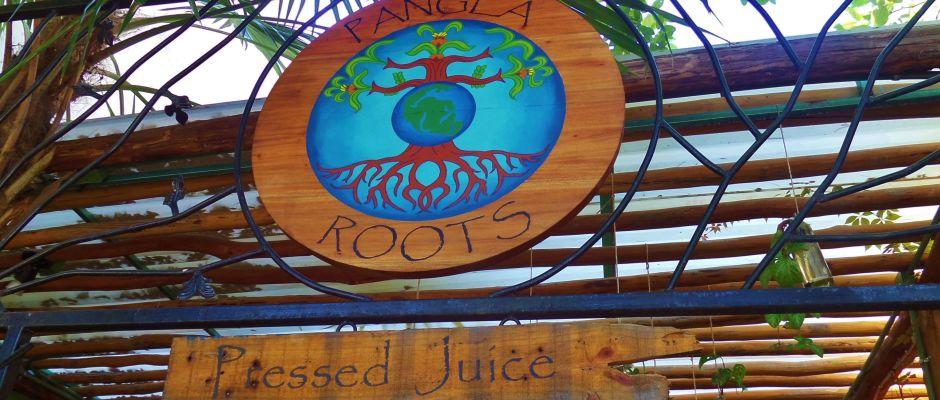 Pangea Roots Juice Bar in Plya Del Carmen
