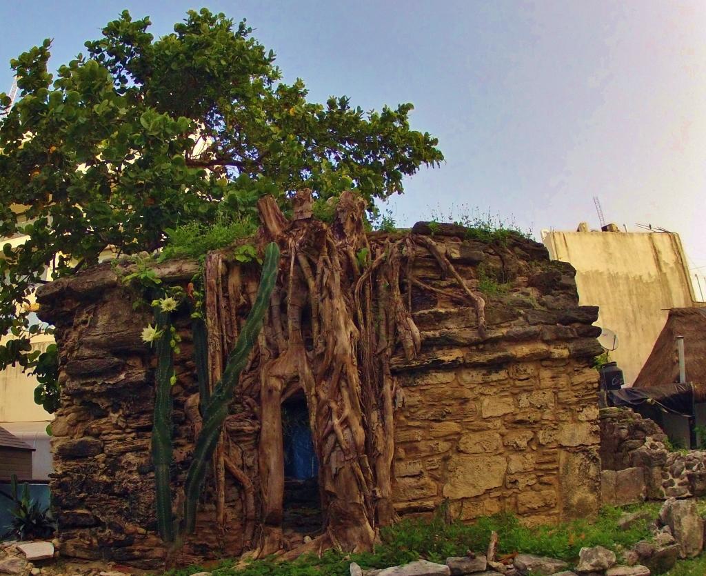 Mayan Ruins in Playa Del Carmen