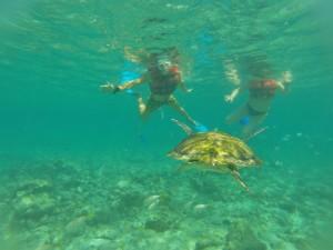 Punto Venado eco park snorkeling