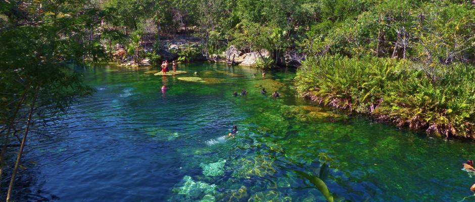 everyone 39 s favorite cenote to visit el jardin del eden