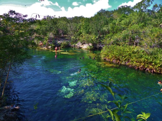 Everyone S Favorite Cenote To Visit El Jardin Del Eden Everything