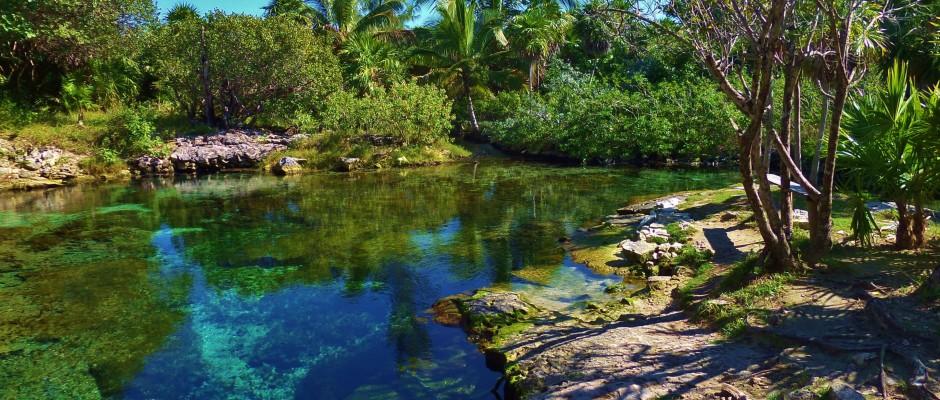 Punto Venado eco park cenote