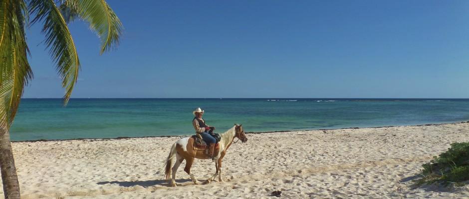 Punto Venado eco park horseback riding