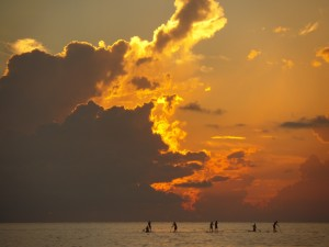 Playa Del Carmen Paddle boarding