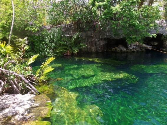 Cenote Cristalino A Good Cenote To Visit From Playa Del Carmen