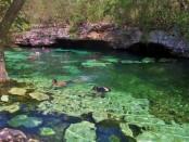 Riviera Maya Cenotes