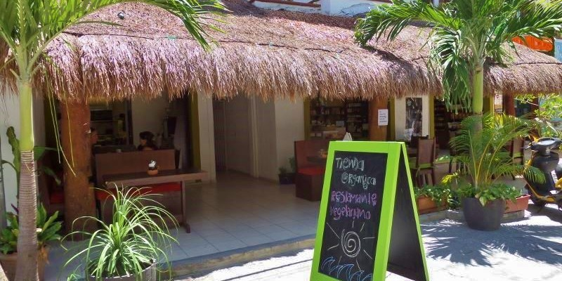 vegetarian restaurants in Playa Del Carmen