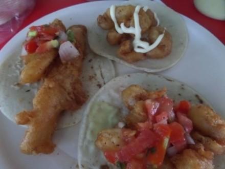 La Floresta seafood restaurant Playa Del Carmen tacos