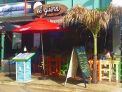 El Güero Seafood Restaurant 5th Avenue Playa Del Carmen