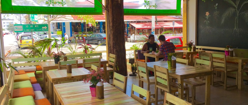Clorofila Vegan and Vegetarian Restaurant Playa Del Carmen