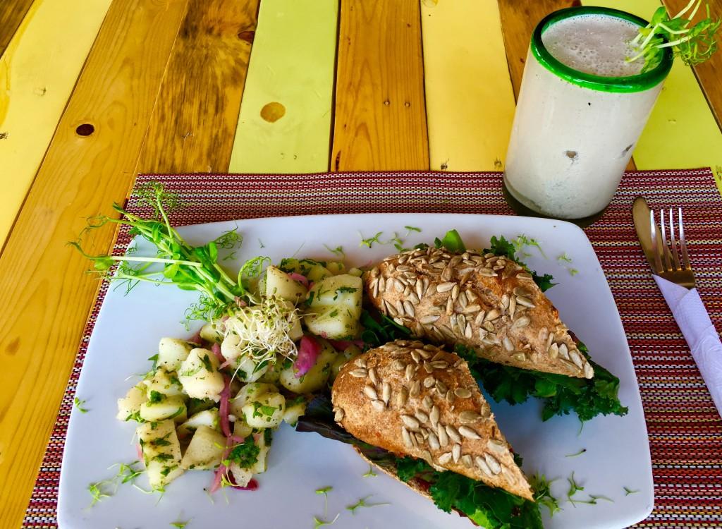 Clorofila Restaurant Playa Del Carmen
