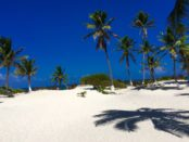 beaches near Playa Del Carmen