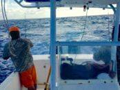 Playa Del Carmen Fishing