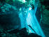 Best dive shop Playa del Carmen Mexico with Tank Ha Dive shop