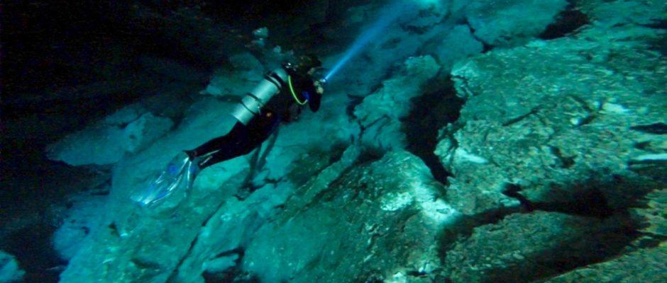 best Dive Shop Playa Del Carmen
