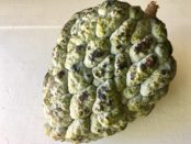 Saramuyo fruit sweetsop