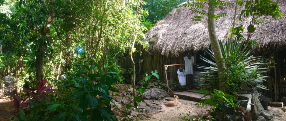Sustainable living in Mexico