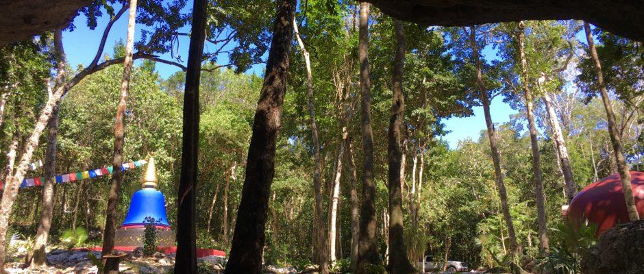 Cenote Ixtlan Private tour