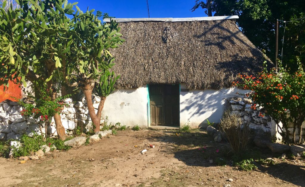 What Are Mayan Houses Like We Show You Inside And Explain