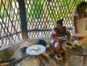 private tours Playa Del Carmen