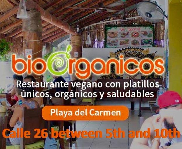 bioorganicos10/1