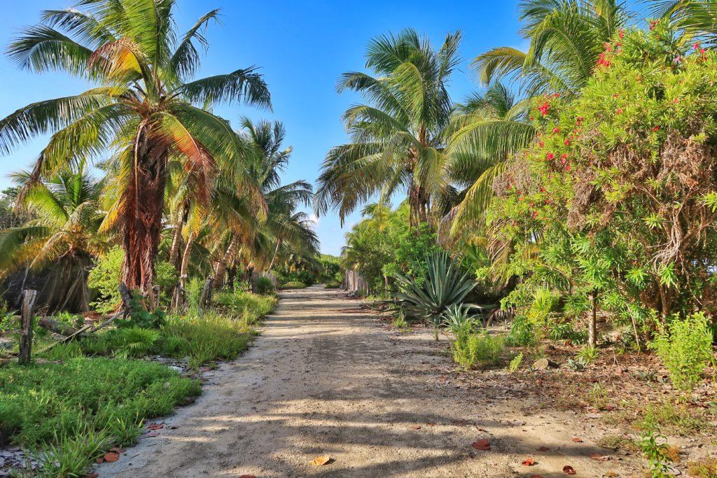 Cabañas Ecoturísticas Costa Maya