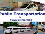 Playa Del Carmen Public transportation