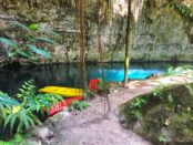 beautiful cenotes